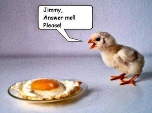 free-funny-pictures-41